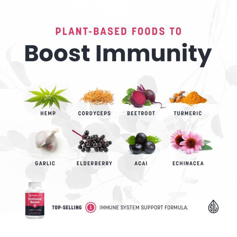 best cbd immune support, organic immune vitamins, elderberry, hemp, cordyceps, beetroot, turmeric, garlic, acai, echinacea