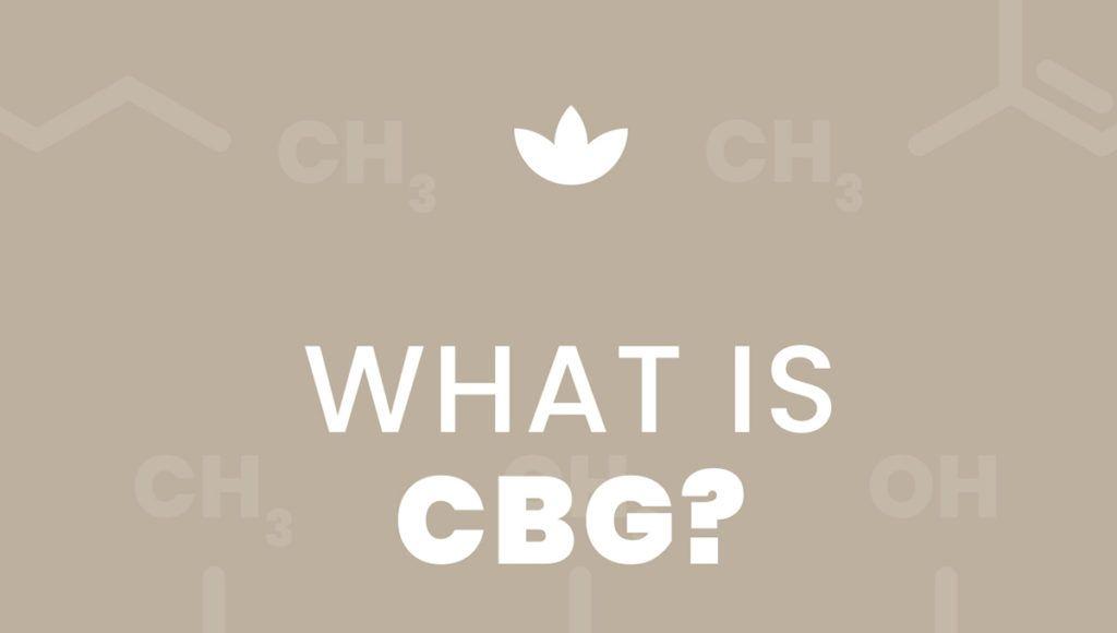 cbg vs cbd, what is cbg, cannabigerol