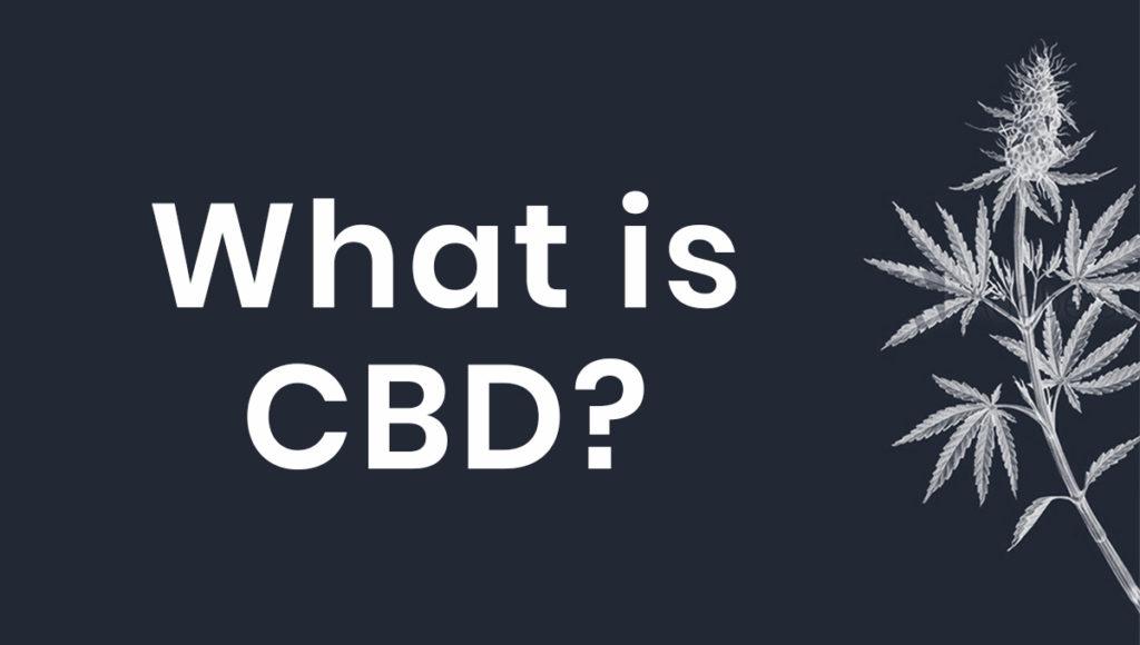 What is CBD, simpleleaf