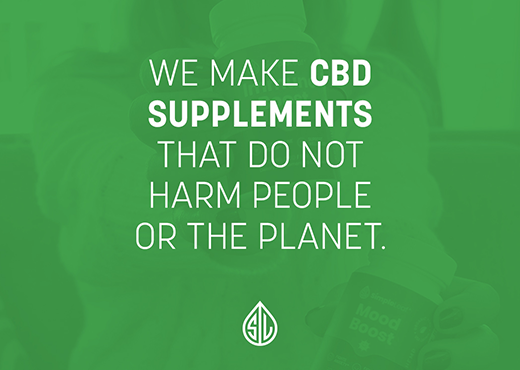 terms and conditions, cbd terms of use