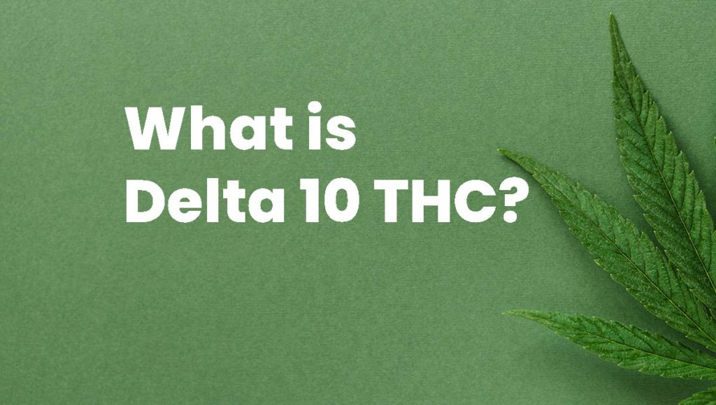 what is delta 10 thc